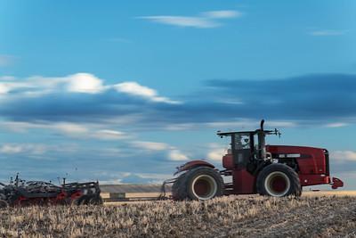 barley 9