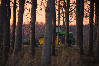 Deere Hunting in the Woods