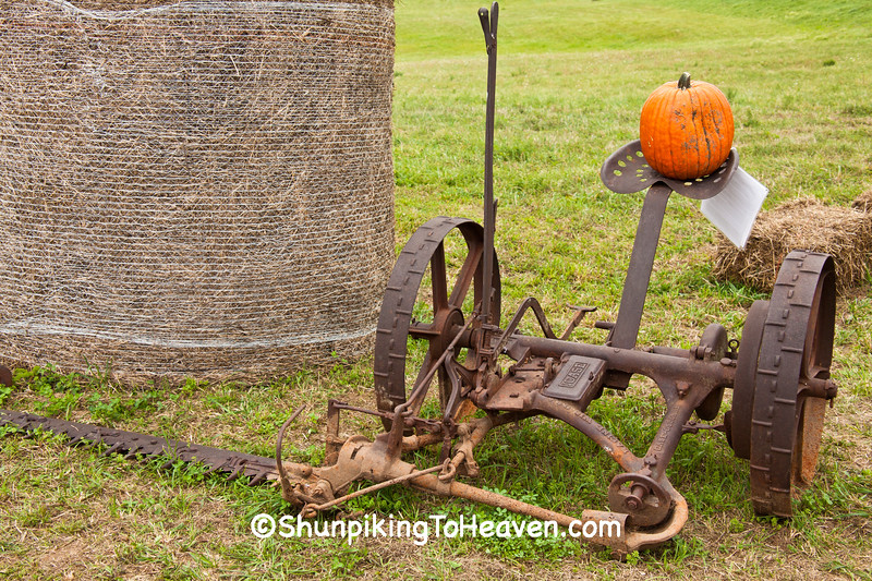 Horse-Drawn Case-Osborne Sickle Mower, Sauk County, Wisconsin