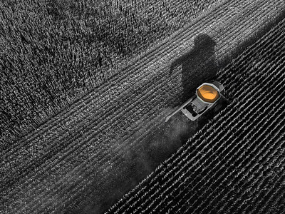 Harvest Shadows