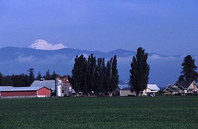 Farm Mt  Vernon