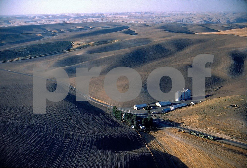 Wheat farm 1 06 209