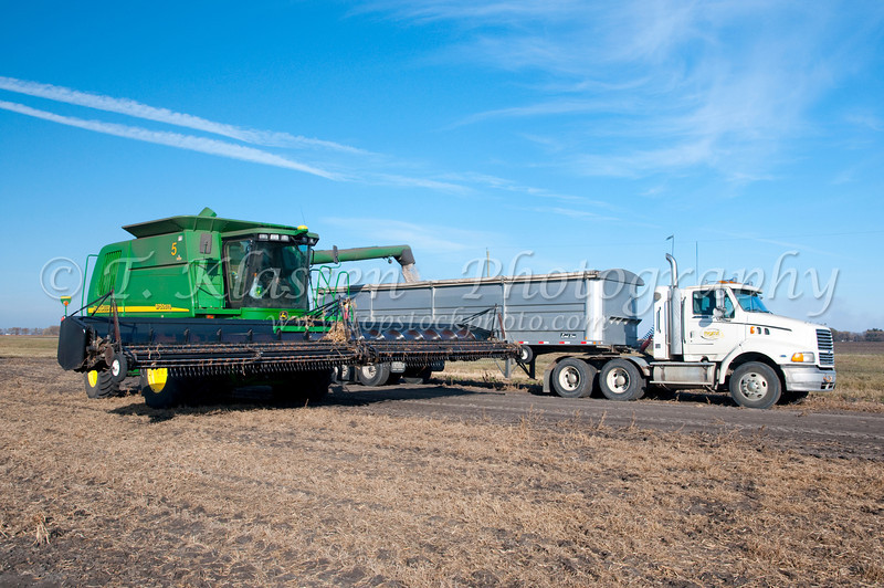 Edible bean harvest on the Froese farm near Winkler, Manitoba, Canada.