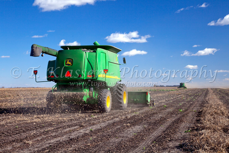 Combine harvester harvesting beans on the Froese farm near Winkler, Manitoba, Canada.