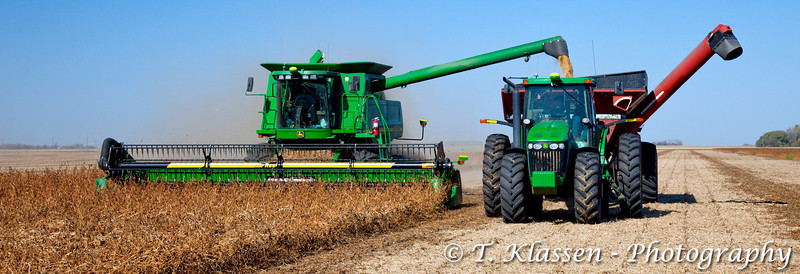 Soybean harvest on the Froese farm near Winkler, Manitoba. Canada.