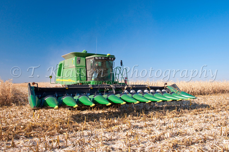 Corn harvest on the Froese farm near Winkler, Manitoba, Canada.