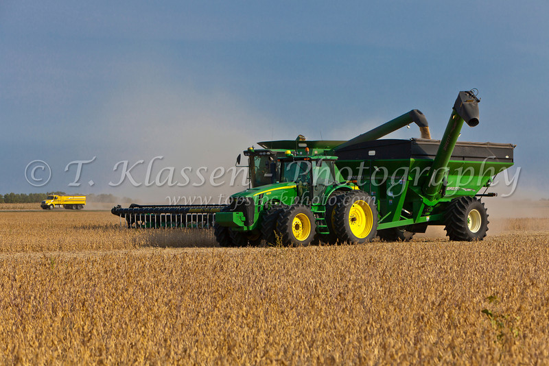 Soybean harvest on the Froese farm near Winkler, Manitoba, Canada.
