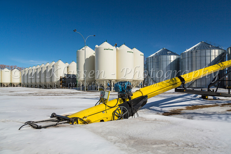 Grain storage bins on the Froese farm in winter near Winkler, Manitoba, Canada.
