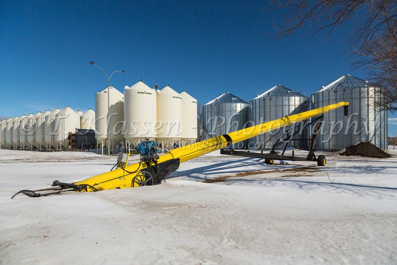Grain storage bins on the Froese farm in winter near Winkler, Manitoba, Canada.
