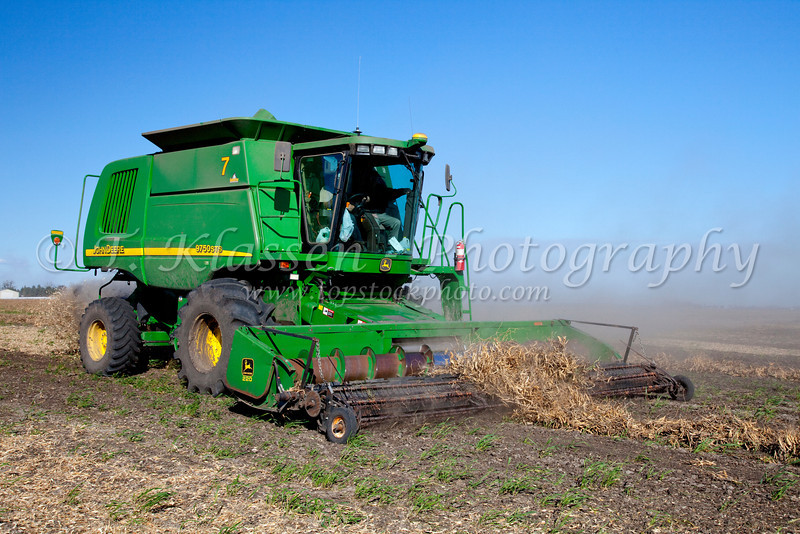 Harvesting beans at the Froese farm near Winkler Manitoba, Canada.