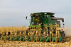 Corn harvest 2011 on the Froese farm near Winkler, Manitoba, Canada.