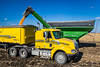 Unloading the corn crop from a grain cart into a large transport truck on the Froese farm near Winkler, Manitoba, Canada.