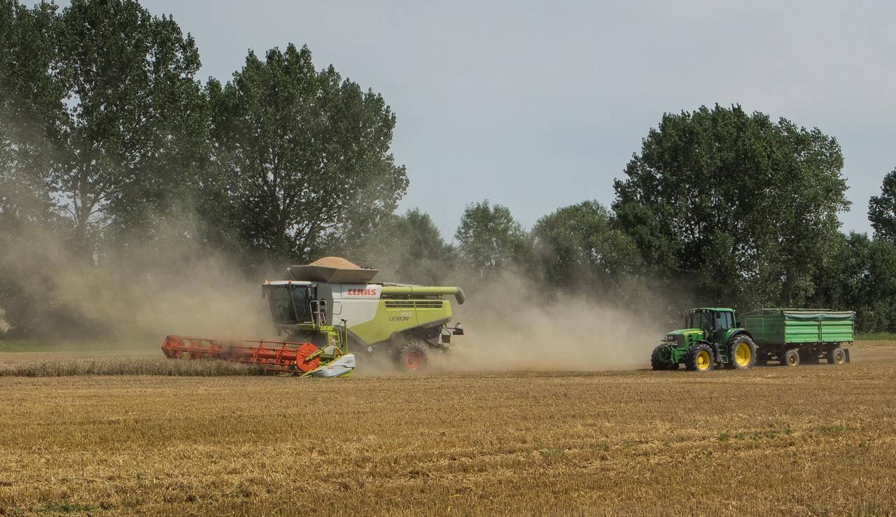 Derenburg, August 2017
