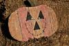 IMG_4589UncleRaysPumpkinPatch