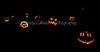 Carved Pumpkins 10-31-13_N5A8859