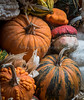 Front Porch Pumpkins _N5A1773