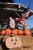 IMG_4596UncleRaysPumpkinPatch
