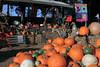 IMG_4527UncleRaysPumpkinPatch
