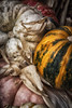 Front_Porch_Pumpkins_November_09,_20121N5A6389untitled