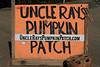 IMG_4614UncleRaysPumpkinPatch