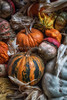 Front Porch Pumpkins _N5A1730-Edit