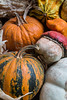Front Porch Pumpkins _N5A1733
