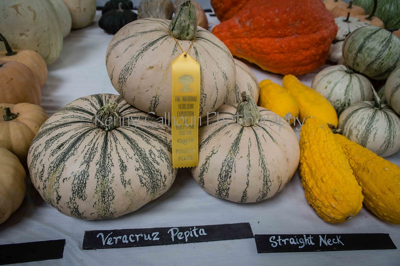 2014 Heirloom Fest Squash_N5A0091