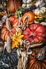 Front_Porch_Pumpkins_November_09,_20121N5A6340untitled