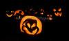 Carved Pumpkins 10-31-13_N5A8881