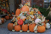 Front Porch Pumpkins _N5A7567