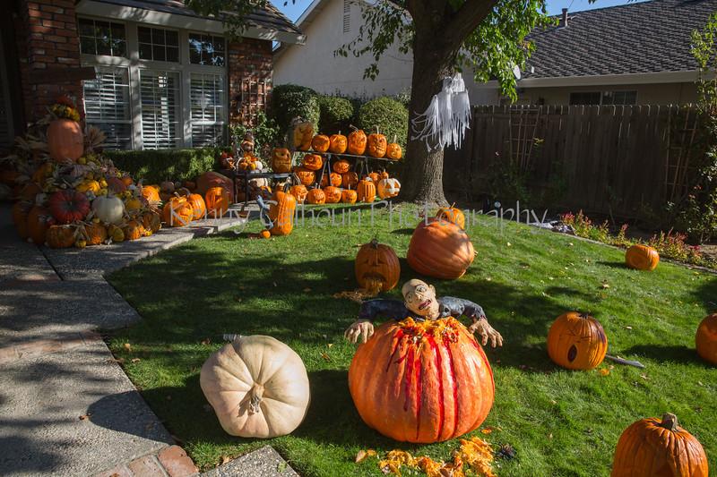 10-31 Halloween 2019-2429