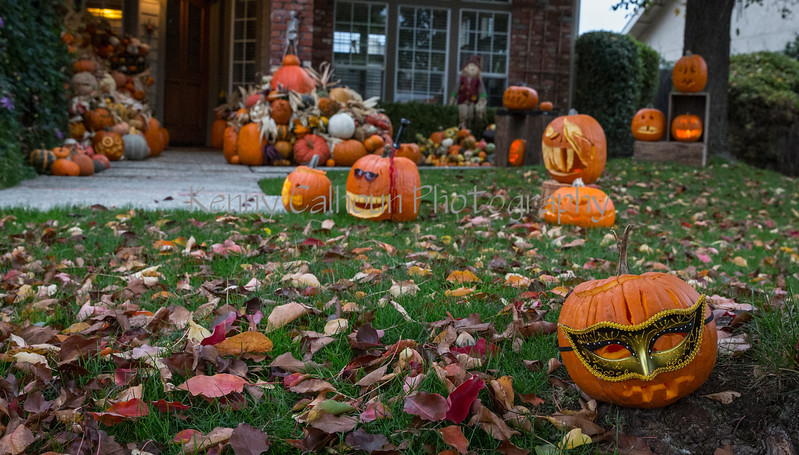 Halloween 2016_N5A1074