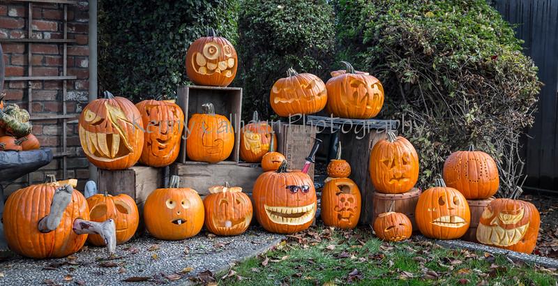 Halloween 2016_N5A1117
