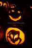 Carved Pumpkins 10-31-13_N5A8925