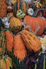 Front Porch Pumpkins _N5A1722