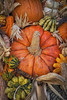 Front_Porch_Pumpkins_November_09,_20121N5A6325untitled