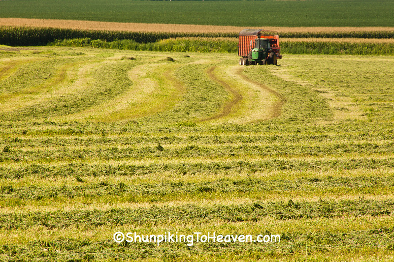 Hay Harvest, Columbia County, Wisconsin