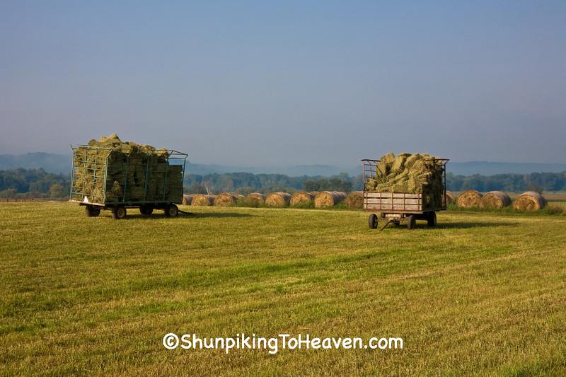 Hay Wagon and Hay Rolls, Sauk County, Wisconsin