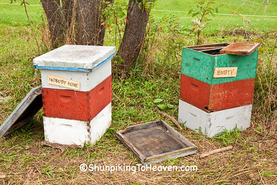 Empty Beehives, Sauk County, Wisconsin
