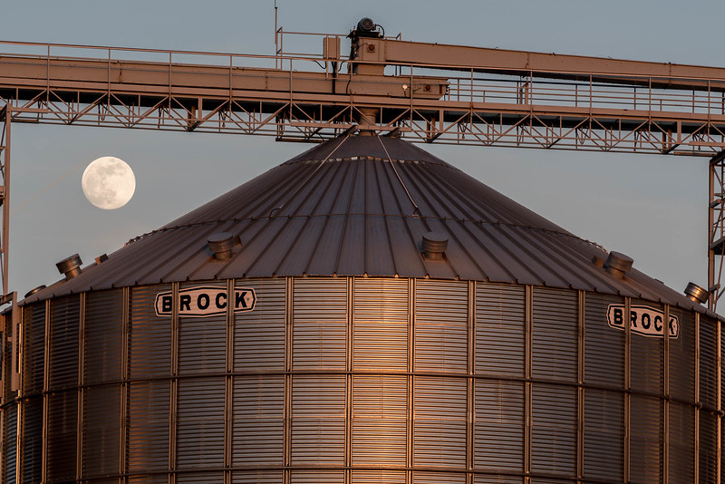 Wilson's Siding - Full Moon