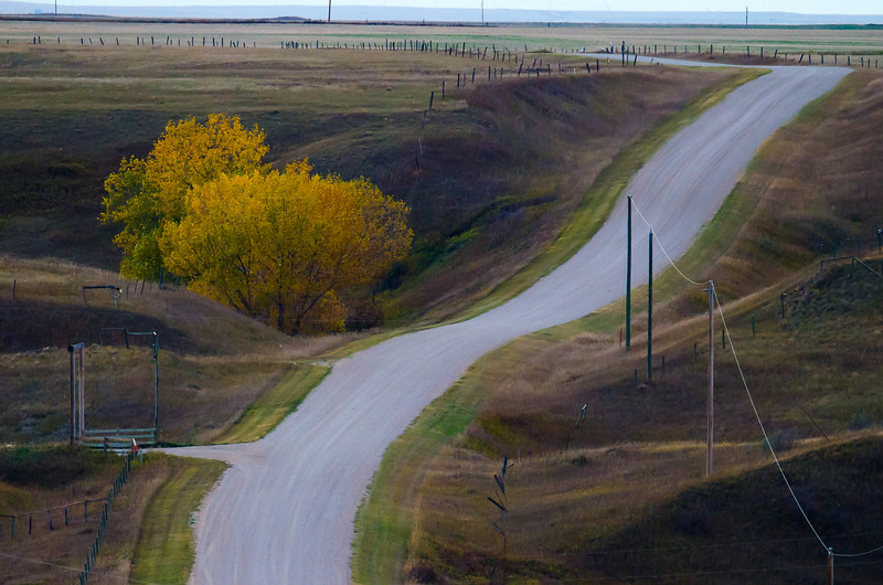 Country Roads - Cardston County