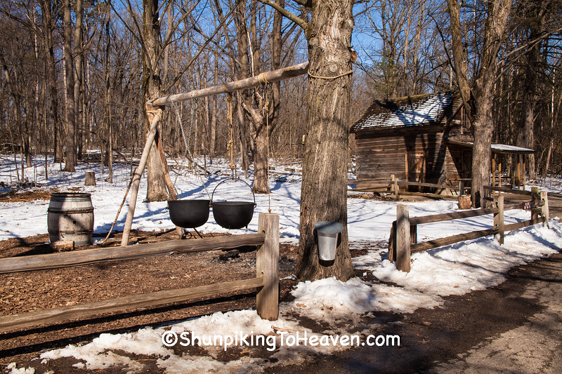 Maple Syrup Time, Columbia County, Wisconsin
