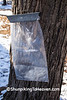 Maple Sap Bag, Columbia County, Wisconsin