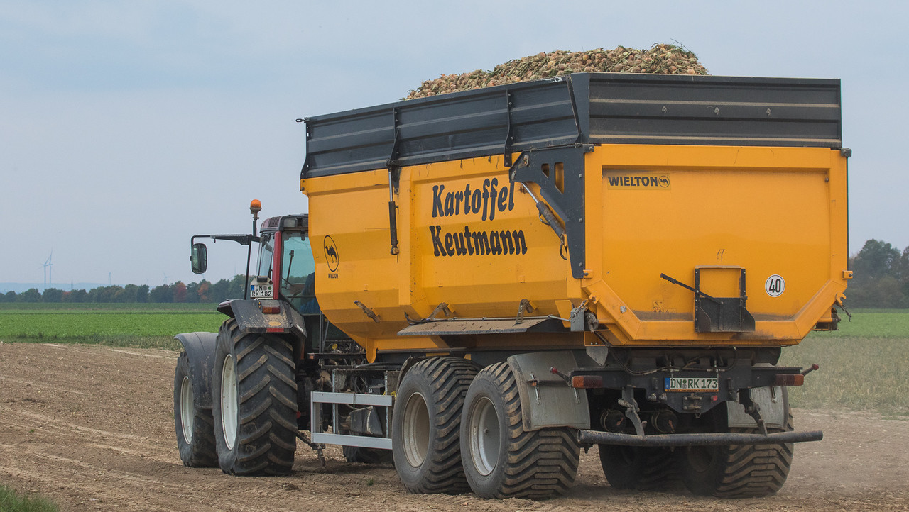 Valtra 8550 with Wielton trailer during onion harvest.