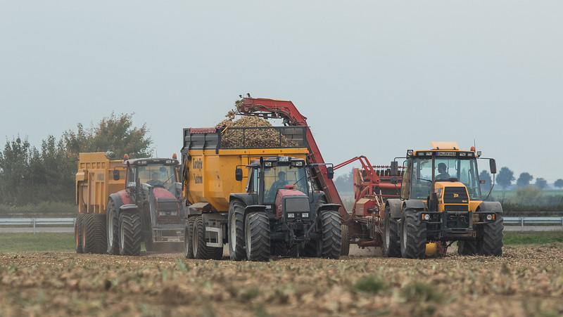 JCB Fastrac 155 65 Hauling A Grimme DL 1500 Potato Harvester And Valtra 8550