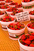 Fresh-Picked Strawberries from Porter Farms, Wake County, North Carolina