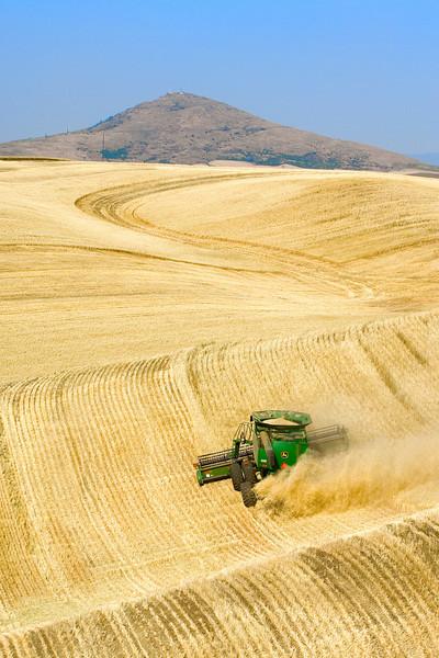 Wheat harvest in the Palouse region of Washington