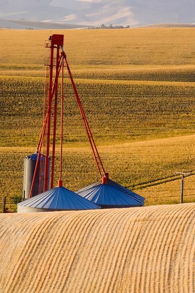 Grain storage tanks