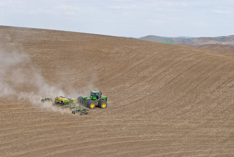 Planting garbanzo beans in the spring in the Palouse region of Washington