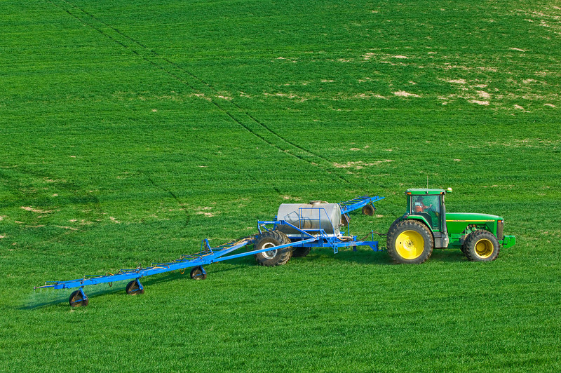 Spraying winter wheat in the spring to reduce weeds